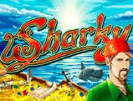 Азартная игра Sharky